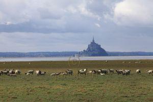 2011-10-12_7553_Mont-St-Michel_med